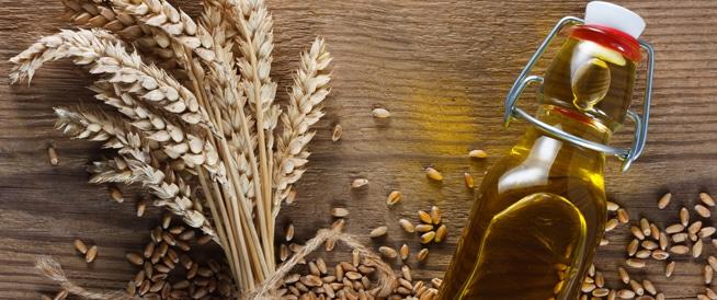 زيت جنين القمح: أهم فوائده وأضراره