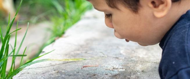 علاج الديدان لدى الأطفال