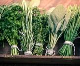 7 علاجات عشبية للإمساك