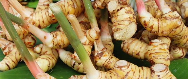 عشبة خولنجان: الفوائد الصحية والقيم الغذائية