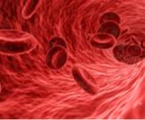 اعراض زيادة الدم في الجسم
