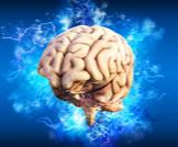 استسقاء الدماغ