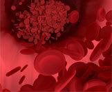أعراض ومخاطر فقر الدم الخبيث