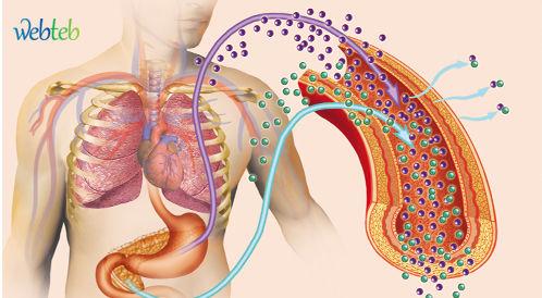 انواع مرض السكري وخصائصها