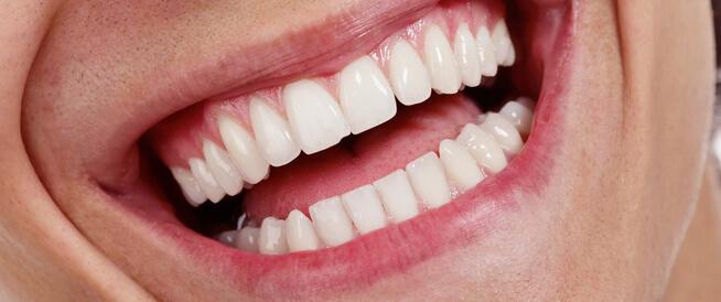 كم عدد أسنان الإنسان