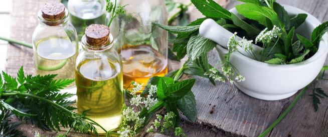 الأعشاب الطبية الأكثر شعبية في العالم