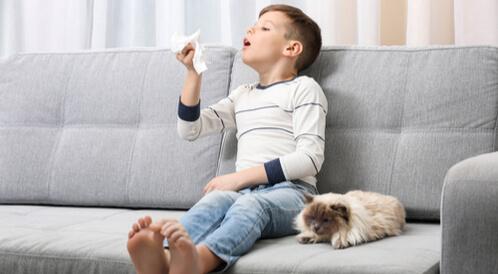 علاج حساسية الأطفال