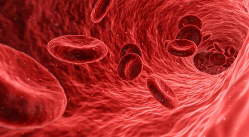 فقر الدم الوراثي