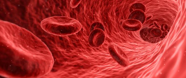 فقر الدم الوراثي: أنواع مختلفة!
