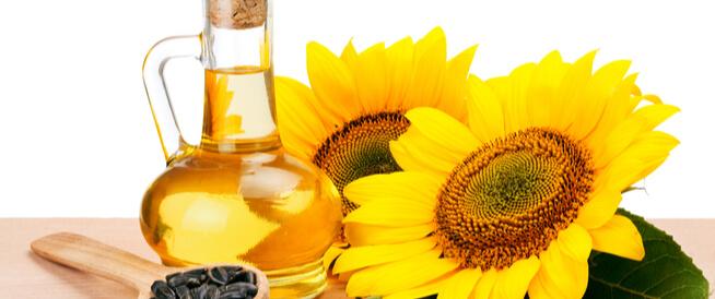 زيت دوار الشمس: أهم الفوائد الصحية