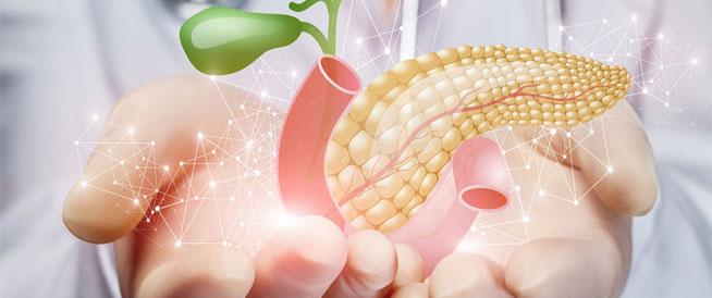 طرق طبيعية لتنشيط وظائف البنكرياس