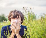 حساسية حبوب اللقاح