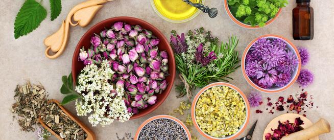 أعشاب تنظم الهرمونات ويب طب