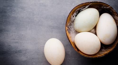 فوائد بيض البط واستخداماته