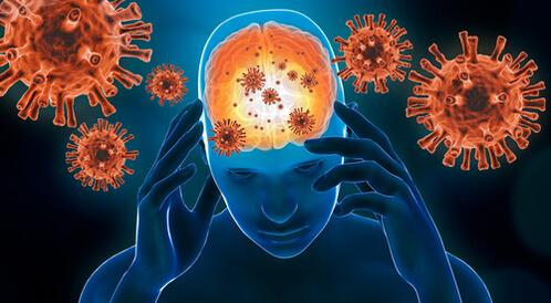 التهاب السحايا الفيروسي: معلومات عنه