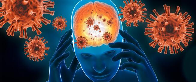 التهاب السحايا الفيروسي: معلومات عامة عنه