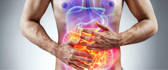 الفرق بين عسر الهضم والقولون العصبي ويب طب