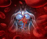 أعراض هبوط الدورة الدموية