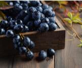 فوائد العنب والأسود وقيمه الغذائية