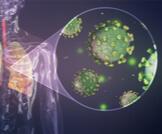 تعرف على أبرز خصائص الفيروسات