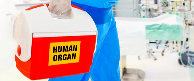 التبرع بالأعضاء: معلومات هامة وحقائق