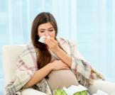 مضادات الهيستامين للحامل