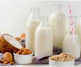 البروتين في الحليب