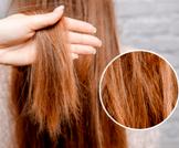 نصائح لعلاج الشعر التالف