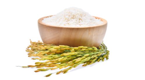 أعراض حساسية الأرز عند الرضع