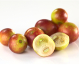 الكامو كامو: فاكهة غريبة لها فوائد
