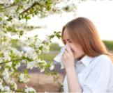 مسببات الحساسية وأعراضها