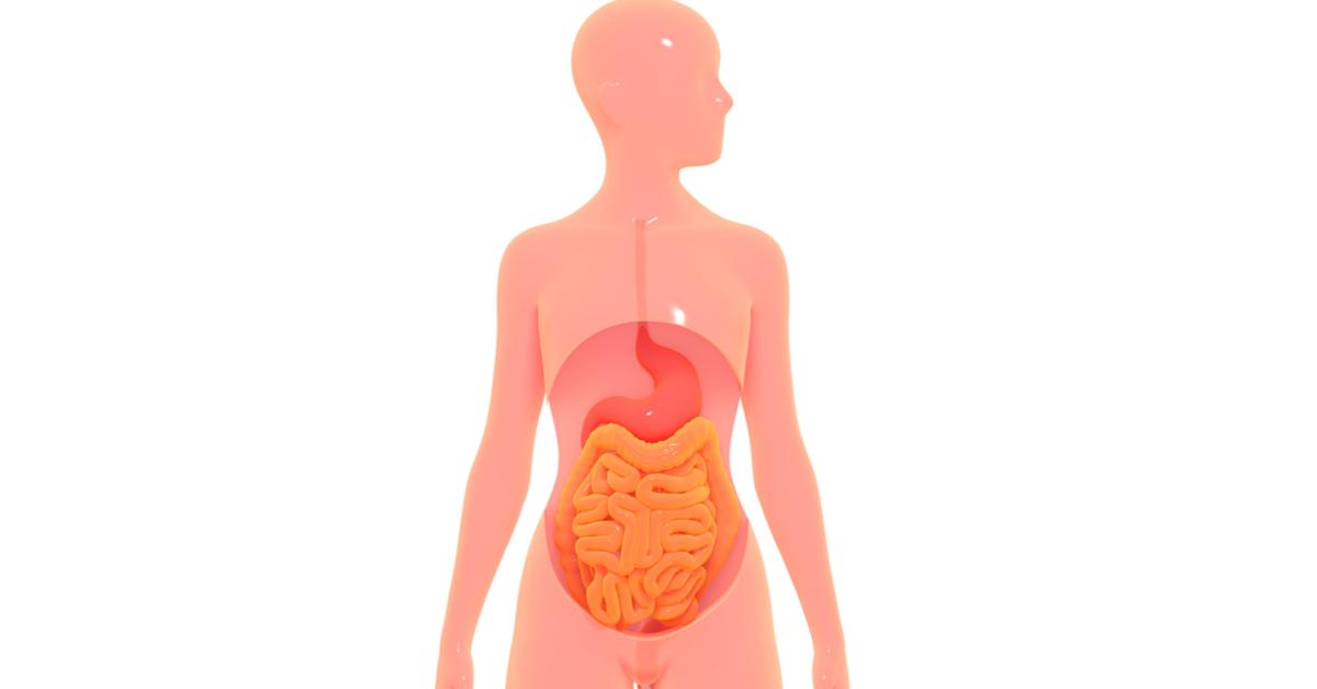 تعرف على طرق تسريع عملية الهضم ويب طب