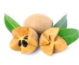 فاكهة السابوديلا: فوائد رائعة ومتنوعة