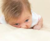متى يثبت رأس الرضيع؟