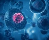 الخلايا الجذعية والسكري: علاج محتمل؟