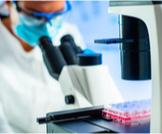 الأمراض التى يتم علاجها بالخلايا الجذعية