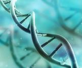 متلازمة باتو: مرض جيني هل يمكن علاجه؟