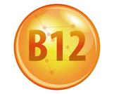 مصادر فيتامين B12 النباتية