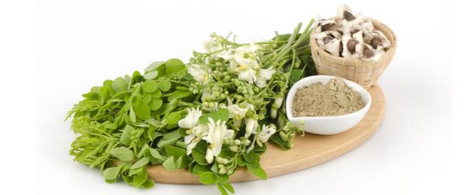 أعشاب تخفض السكر التراكمي