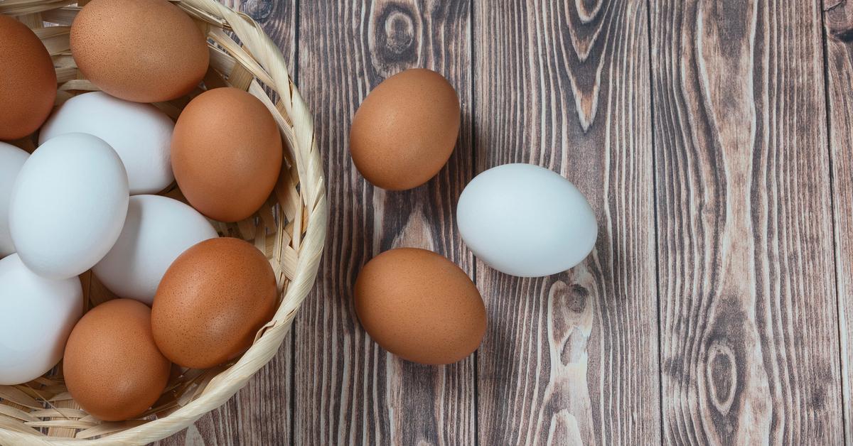 هل البيض يسبب غازات أم لا ويب طب