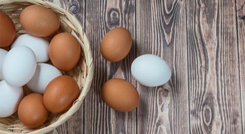 هل البيض يسبب غازات