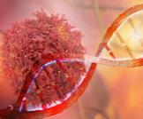 هل السرطان وراثي؟ إليكم الإجابة