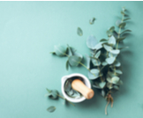 علاج قرحة الفراش بالأعشاب