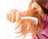 علاج خشونة الشعر: وصفات طبيعية متنوعة
