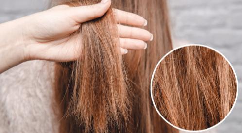 تغذية الشعر التالف: طرق ووصفات متنوعة