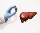 أضرار زراعة الكبد على المتبرع