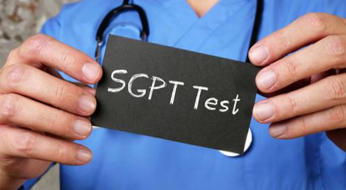 تحليل SGPT: دليلك الشامل