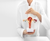 زوائد لحمية في الرحم