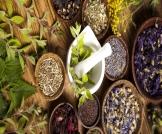 علاج التهاب بطانة الرحم بالأعشاب