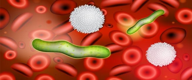 أعراض التهاب الدم الفيروسي